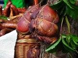 Lista członków sieci regionalnej Dziedzictwo Kulinarne Kujawy i Pomorze